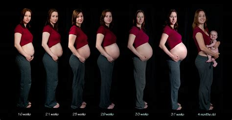does stameta help with early pregnancy picture 8