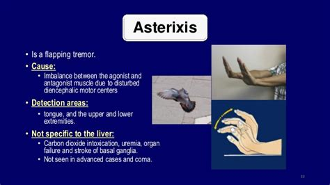 agonist and antagonist muscle picture 10