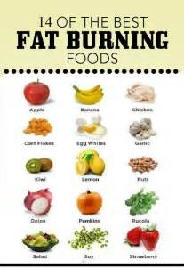 most effective fat burning food picture 3