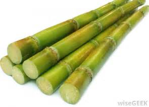 aerobic microbial treatment of sugar cane picture 5