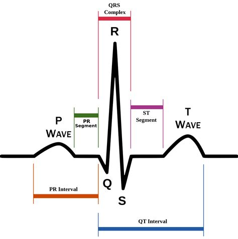 can herbal vitamins give you an abnormal ekg picture 8
