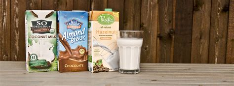 raw food diet and soy milk picture 6