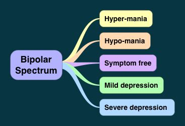 bipolar spectrum disorders and aging picture 10
