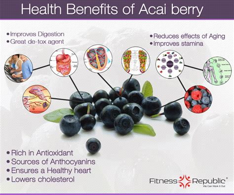 what is the vitamin content in acai berries? picture 2