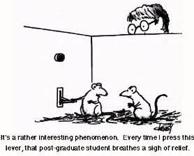 pheromones exercise picture 7