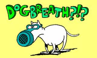 canine indigestion bad breath picture 9