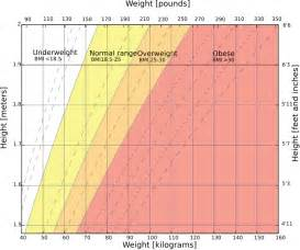 how much does the average el movement weigh picture 10