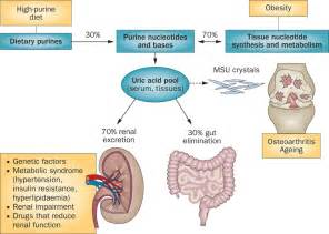 uric+acid symptoms and causes picture 14
