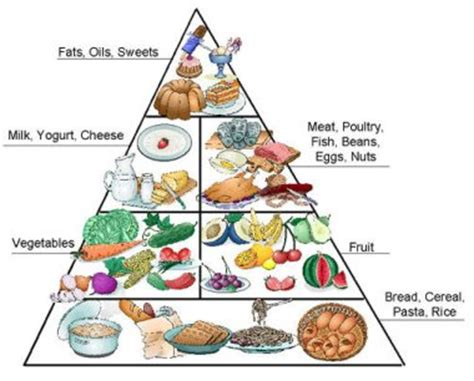 1800 calorie diabetic diets picture 6