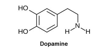 herbs to lower dopamine levels picture 9