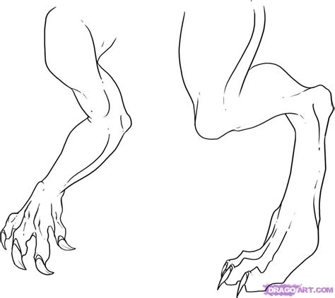 female normal muscular legs normal picture 11