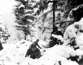 fighting the battle of the bulge can range picture 10