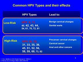 genital warts hpv picture 2