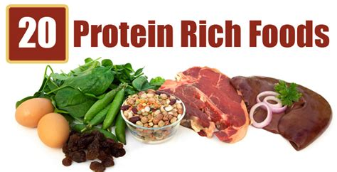 all protein diet picture 5