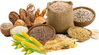carbohydrate type diet picture 17