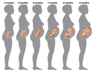 can gynaecosid remove a one month pregnant if picture 9