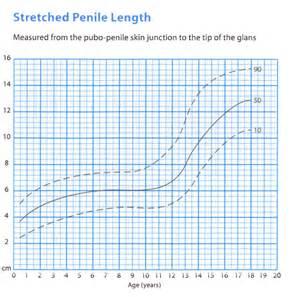 calculator penis enlargement picture 3