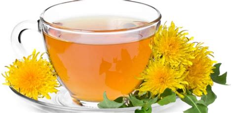 dandelion tea picture 18