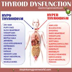 can thyroid problems make you sleepy picture 1