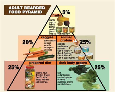 complete iguana diet picture 17