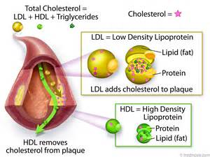 Lower high cholesterol and ldl picture 5
