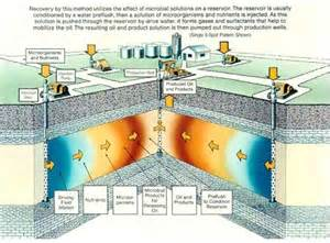 what is microbial enhanced oil recovery picture 1