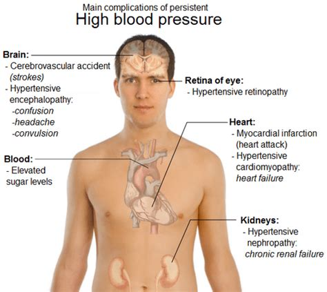 What causes blood pressure to go up and picture 12