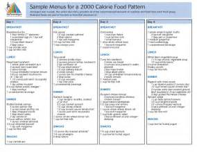 2000 calories a day balance diet sample picture 2