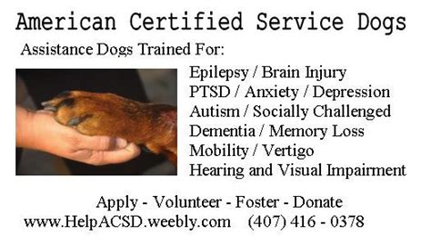 get certfided for a home daycare business orlando picture 12