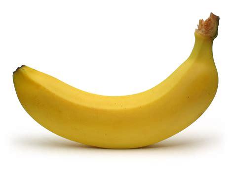 bentuk penis picture 9