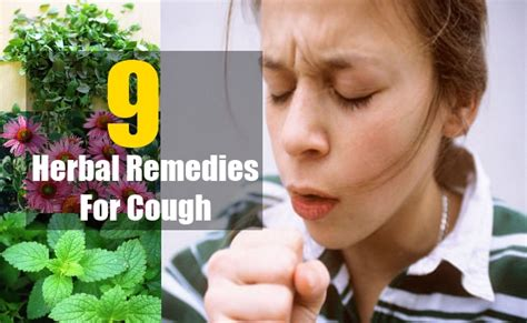 herbal remedy for cough picture 15