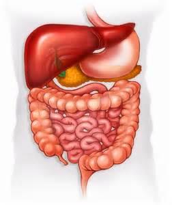 colon cancer surgery picture 9