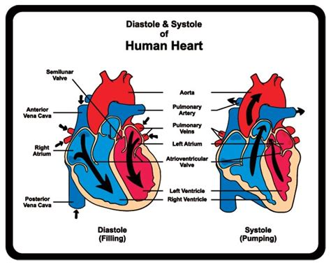 What is the difference of blood pressure for picture 1