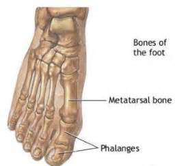 big toe metatarsal phalangeal joint foot sleeve picture 2