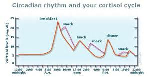 Weight gain and cortisone picture 6