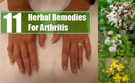 herbal remedies for arthritis picture 1