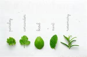 legal natural herb or plant that works like picture 13