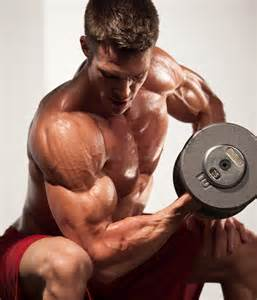muscle gym picture 7
