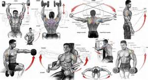 ultimate shoulder rids women on women biger picture 2