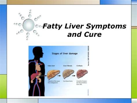 fatty liver picture 6