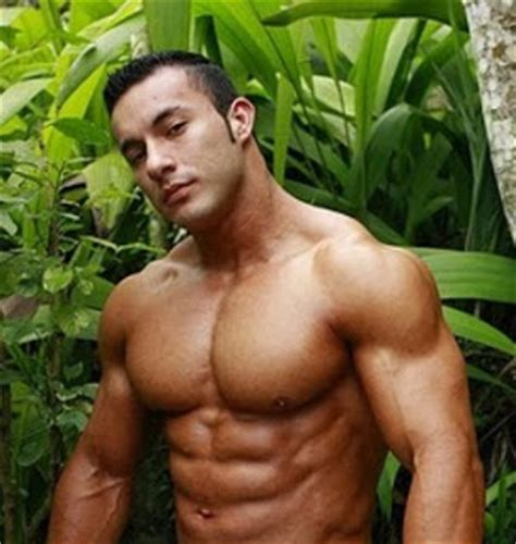 anton muscle picture 17