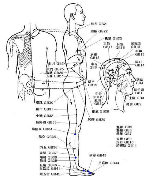 gall bladder pressure picture 9