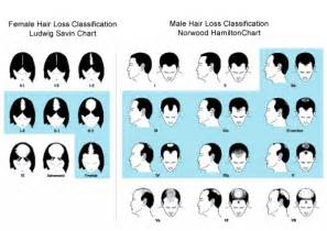 hair loss scale picture 9