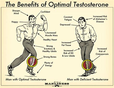 testosterone benefits in cycling picture 1