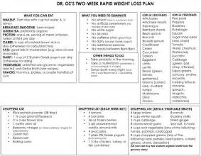 free rapid weight loss diet plan picture 9