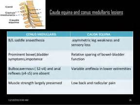 back pain loss of bladder picture 6