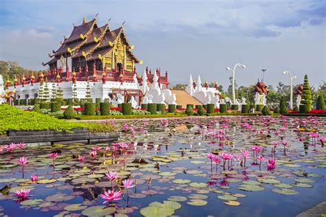 which city in thailand can i buy gluta picture 7