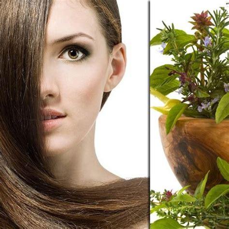 ayurvedic hair loss picture 5