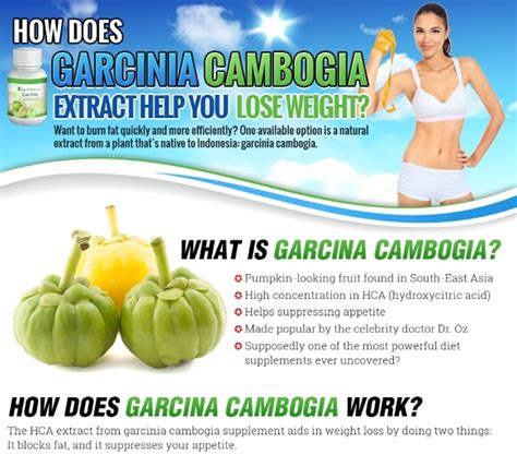 does garcinia cambogia effect your blood picture 14