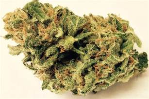 herbal smoke review picture 11